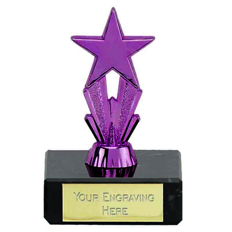 MicroStar Purple Award - FT173A