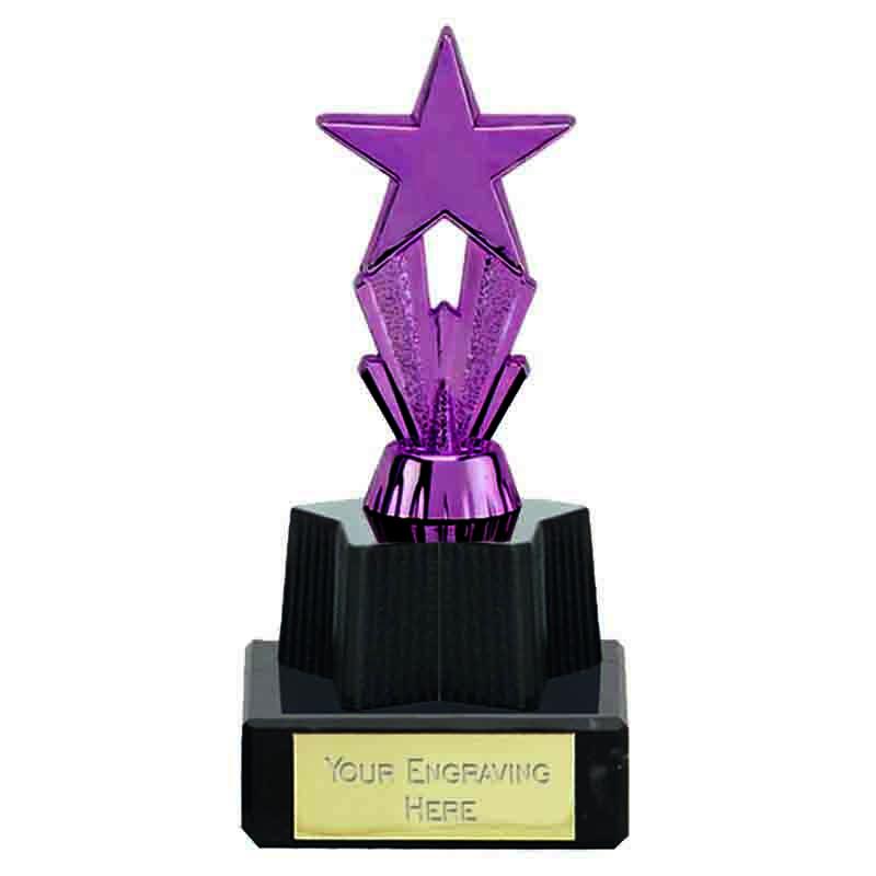 MicroStar Purple Award - FT173B